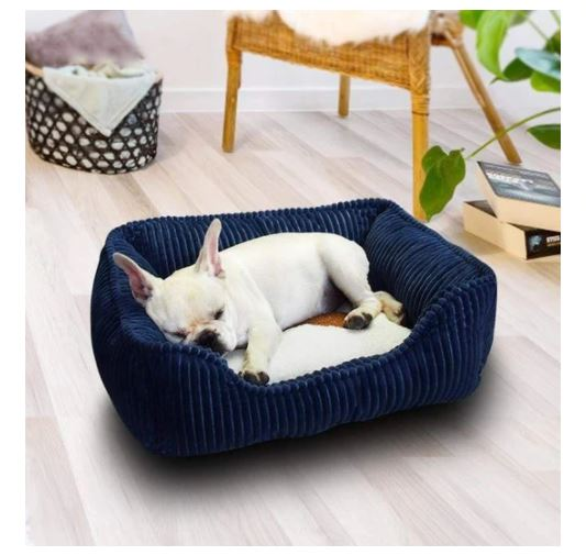 best french bulldog bed